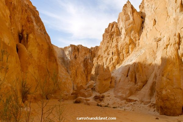 The White Canyon
