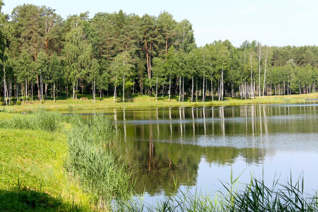 Drukonis Lake 2